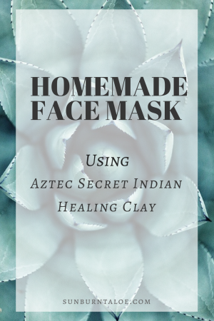 Homemade Face Mask Aztec Secret Indian Healing Clay