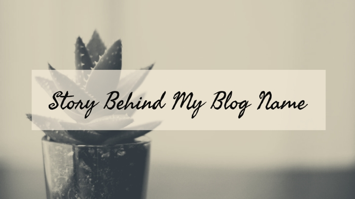 Story behind my blogname